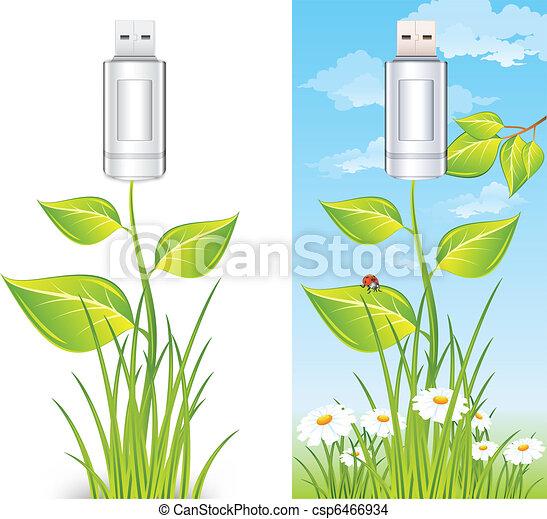 Flash drive & plant - csp6466934