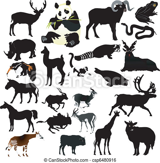 collection of vector animals - csp6480916