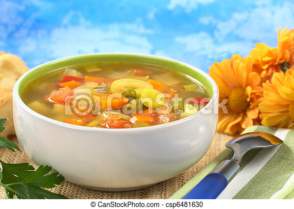 Fresh vegetable soup made of green bean, pea, carrot, potato, red bell pepper, tomato and leek in bowl with flowers in the back (Selective Focus, Focus on the vegetables in the middle of the soup) - csp6481630