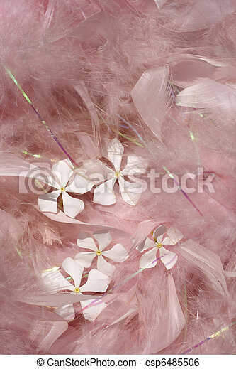 Fluffy pink feathers with white flowers  - csp6485506