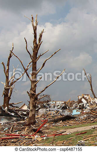 Tornado Damaged Trees - csp6487155