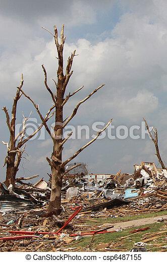 Tornado Damaged Trees - csp6487155