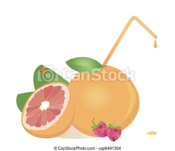 grapefruits juice ,vector - csp6491304