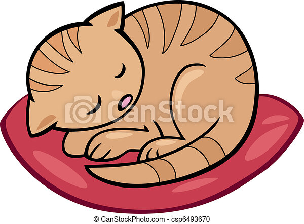 sleeping kitten - csp6493670