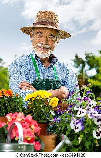 senior man gardening - csp6494428