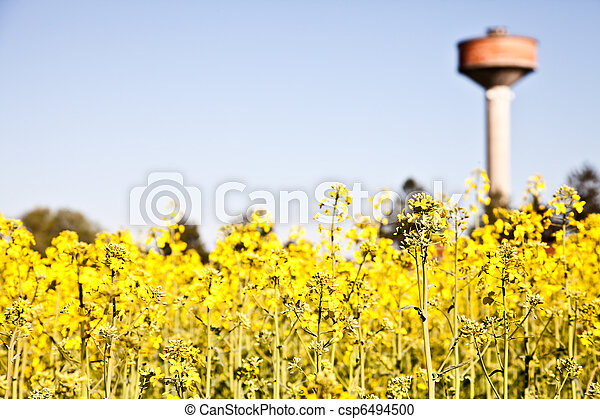 Country and water tower - csp6494500