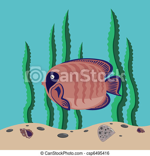 red fish - csp6495416