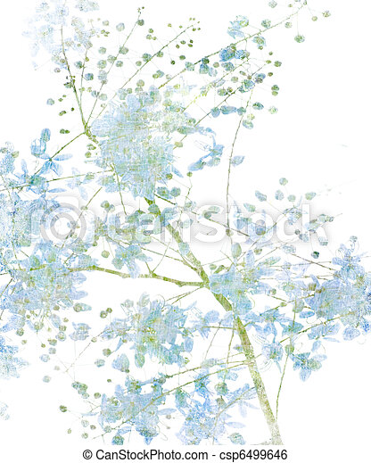 Flower Blossom on White - csp6499646