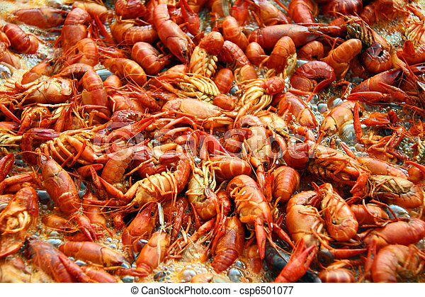 Louisiana crawfish boiling in a pot of spicy water. - csp6501077