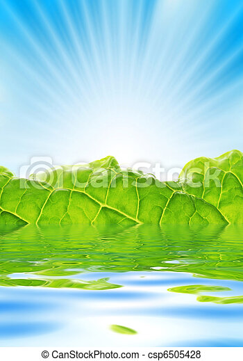 Fresh greenery with rays of sun rising over blue sky. - csp6505428