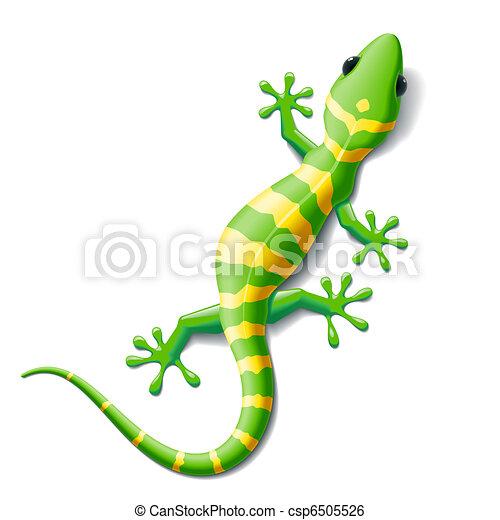 Gecko - csp6505526
