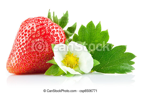 strawberry berry with green leaf and flower - csp6506771