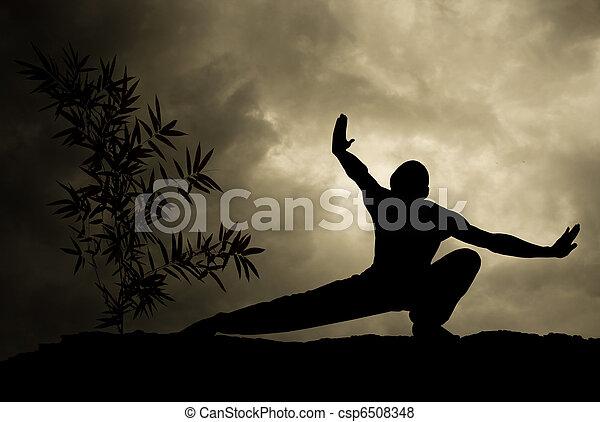 Kung Fu Martial Art Background - csp6508348