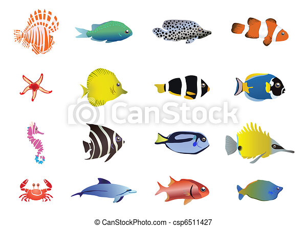 sea-creatures - csp6511427