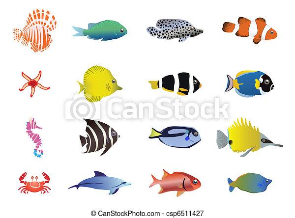 sea-creatures      - csp6511427
