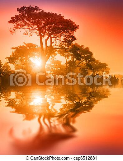 Překrásný, Kopyto, v, Západ Slunce - csp6512881