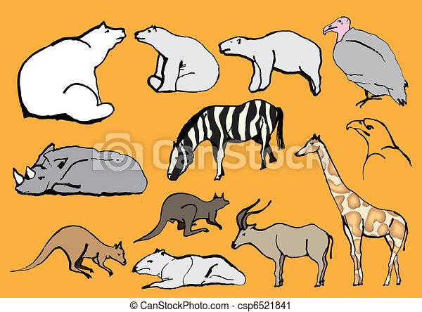 Line Drawing Exotic Animals  - csp6521841