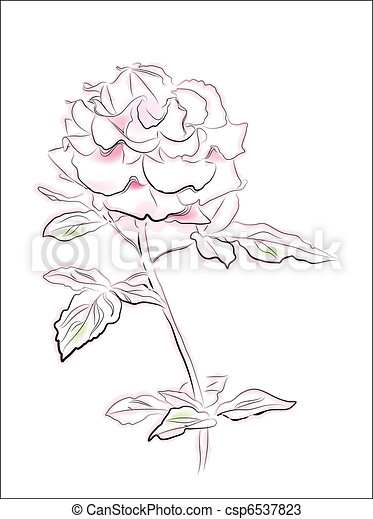 vintage illustration of pink rose - csp6537823