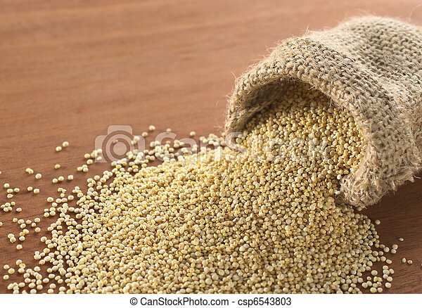 Raw white quinoa grains in jute sack on wood. Quinoa is grown in the Andes and is valued for its high protein content and nutritional value (Selective Focus, Focus on the quinoa in the front sack open - csp6543803