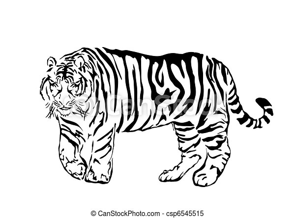 mammal - csp6545515