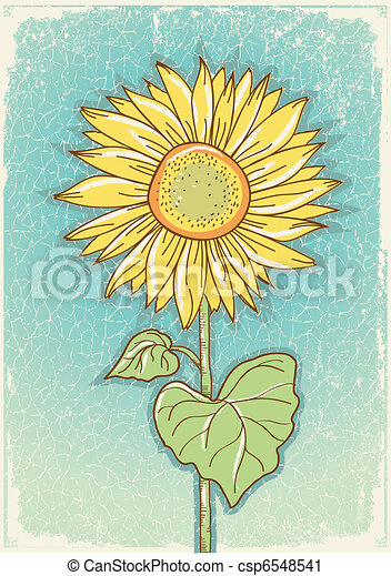 Sunflower .Vector vintage postcard with grunge elements  - csp6548541