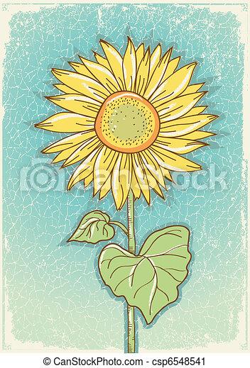 Vector Clip Art of Sunflower Vector vintage postcard with grunge ...