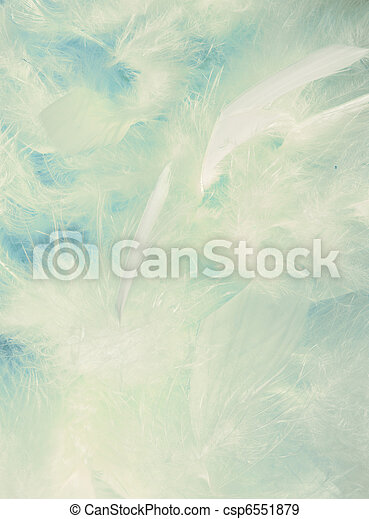 Background of fluffy cloud-like feathers - csp6551879