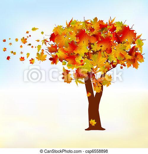Maple Tree Drawing Maple Tree Autumn Leaf Fall