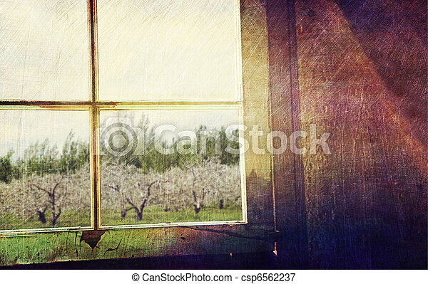 Old window looking out to apple orchard - csp6562237