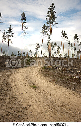Dirt road in clearing - csp6563714
