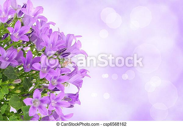 Purple flower background - csp6568162