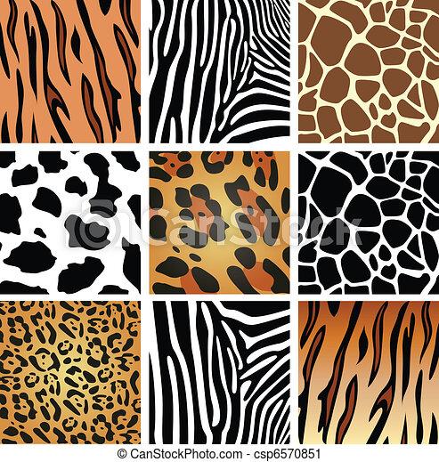 animal skin textures - csp6570851