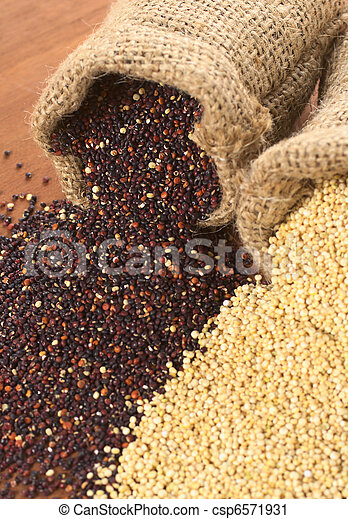 Raw red and white quinoa grains in jute sack on wood. Quinoa is grown in the Andes region  and has a high protein content and a high nutritional value (Selective Focus, Focus on the red quinoa grains  - csp6571931