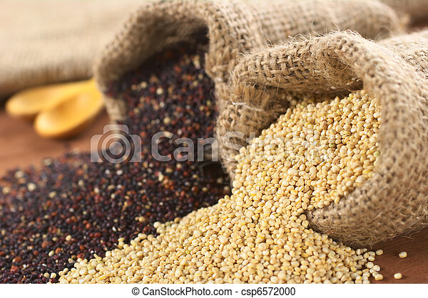 Raw red and white quinoa grains in jute sack on wood. Quinoa is grown in the Andes region  and has a high protein content and a high nutritional value (Selective Focus, Focus on the white quinoa grain - csp6572000