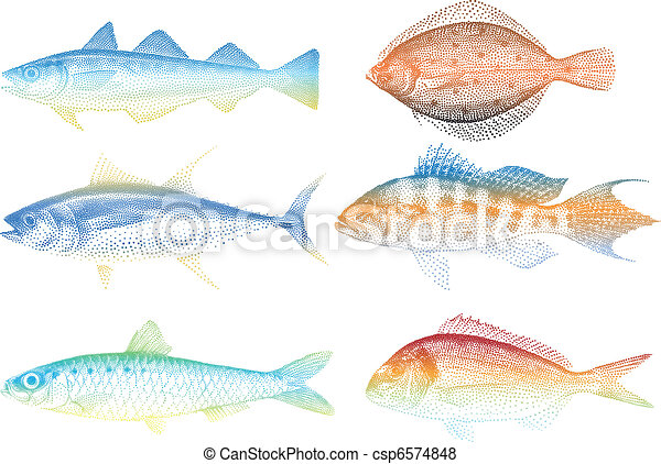 sea fishes, vector - csp6574848