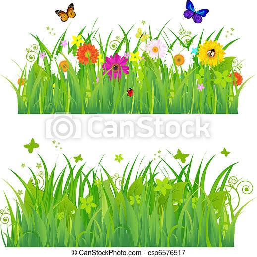 Green Grass With Flowers And Insects - csp6576517