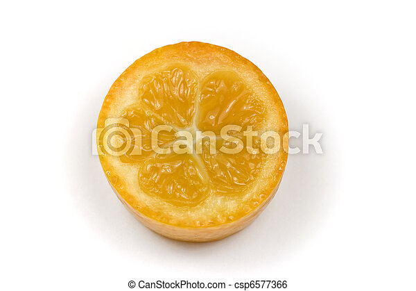 Kumquat or Cumquat - csp6577366
