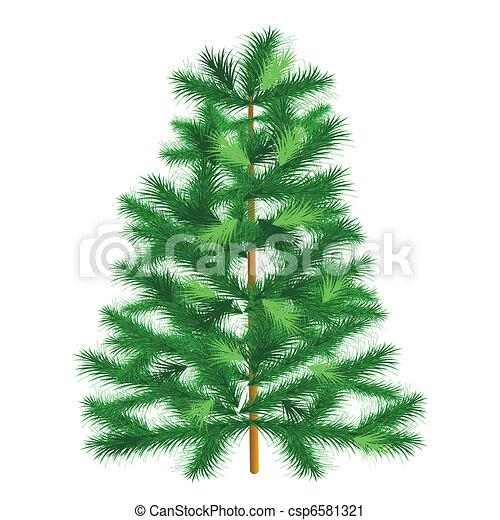 Vector Clip Art of Evergreen tree fir tree - Conifer spruce on ...