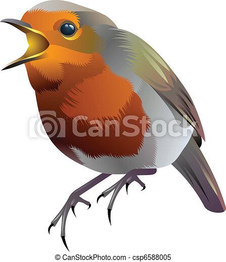 small grey bird with orange breast - csp6588005