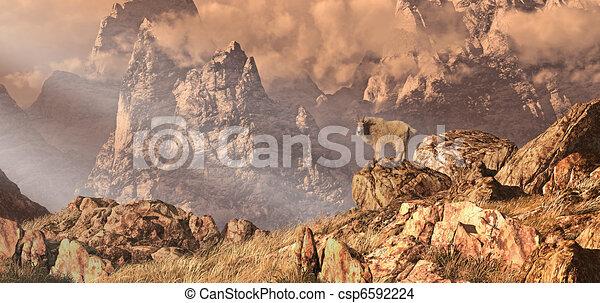 Mountain Goat In The Rocky Mountain - csp6592224