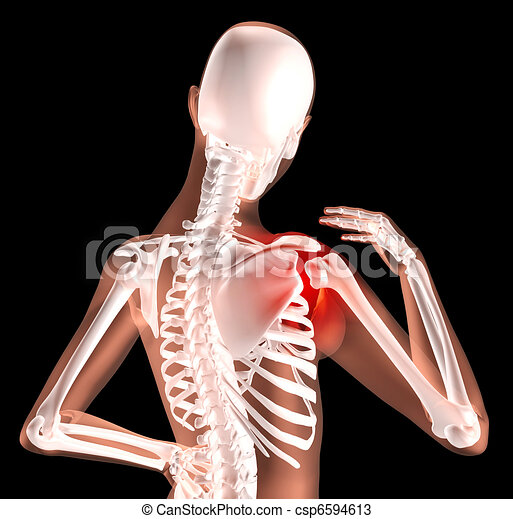 Female skeleton with shoulder pain - csp6594613