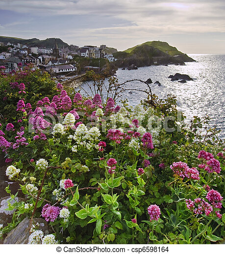 Seaside resort viewed from top of nearby cliff with vibrant colorful flowers in foreground - csp6598164