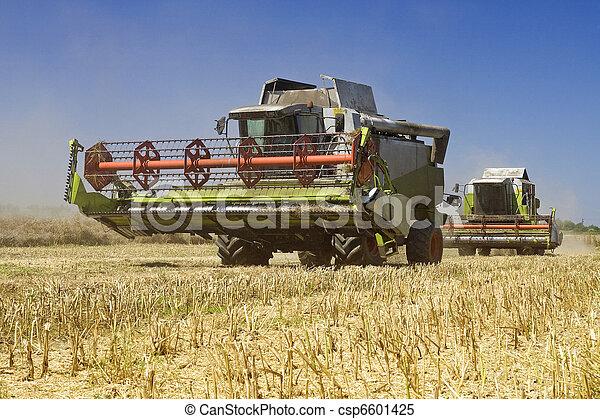 Agriculture - Combines - csp6601425