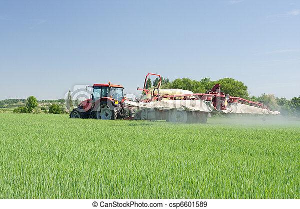 Agricultura, planta, protección,  - - csp6601589