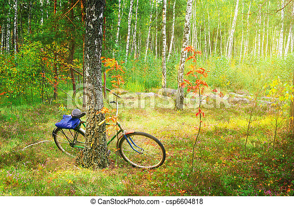Bicycle in spring forest - csp6604818