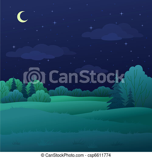 Landscape, night summer forest - csp6611774