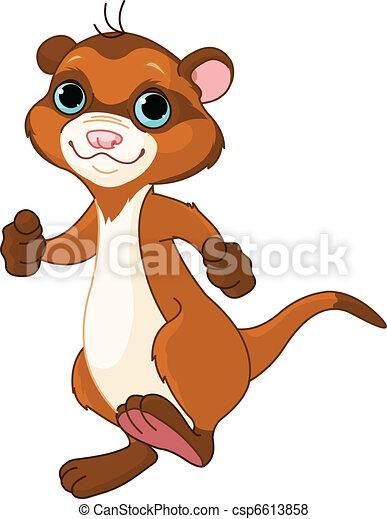 Little ferret - csp6613858