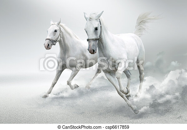 White horses  - csp6617859