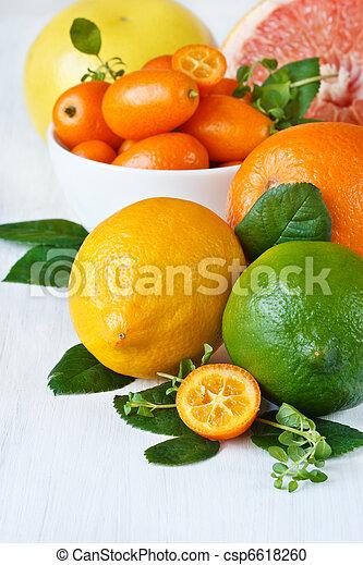 Assortment citrus fruit. - csp6618260