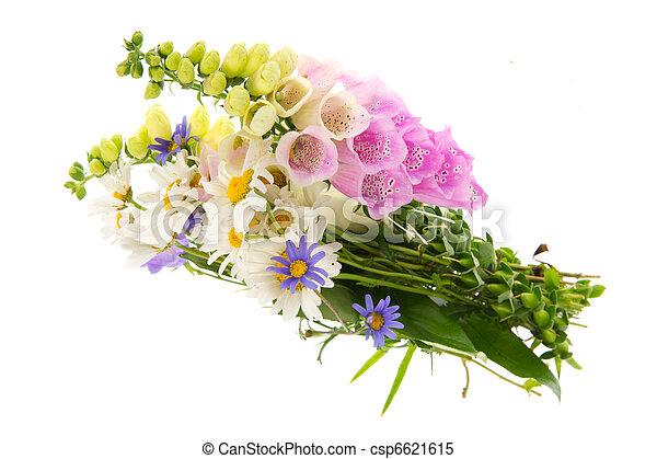 images de bouquet sauvage folwers pourpre digitale fleurs csp6621615 recherchez des. Black Bedroom Furniture Sets. Home Design Ideas